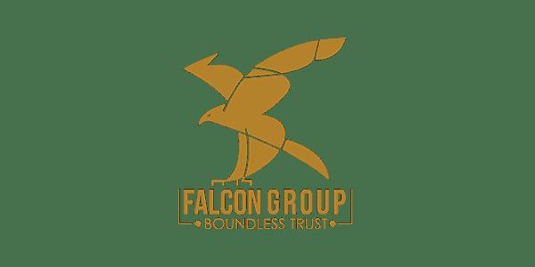 falcon-modi-wareneingangsscanner-sawyer-relabeling-barcode-strichcode-scanner-adomo-kameratechnik-technologie-bauteilrollen